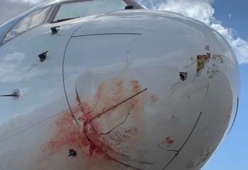 Avionul lui Utah Jazz a aterizat de urgență